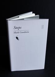 Steps (E Bolland)